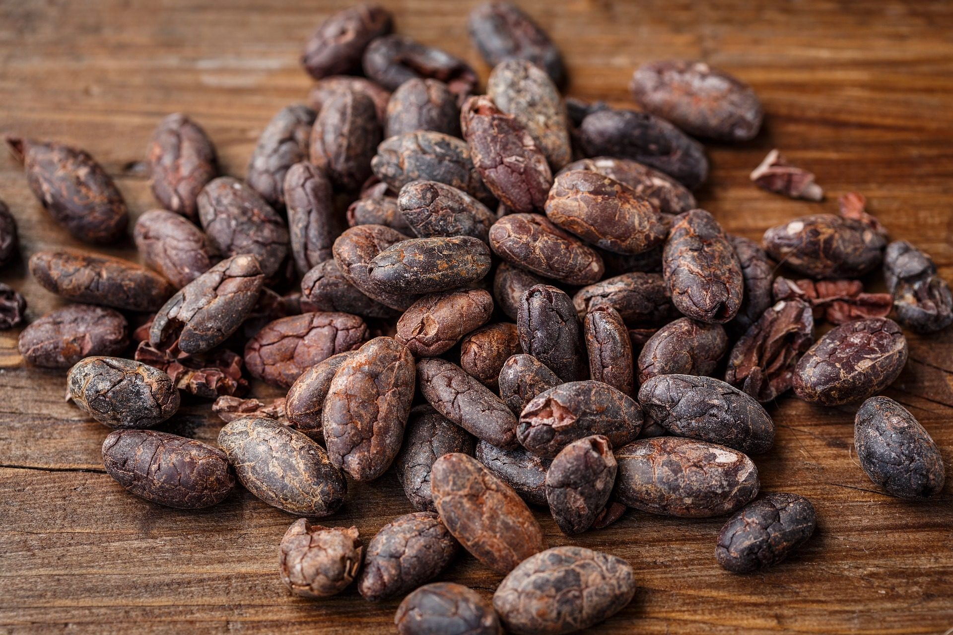 organikus kakaó - bean to bar étcsokoládék